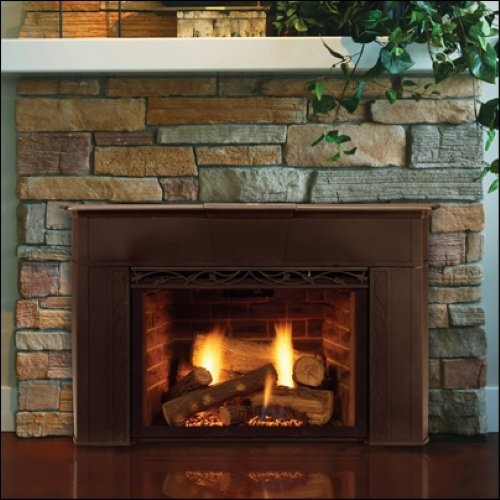 "Majestic Tavern Brown 30"" 30000 BTU Direct Vent Liquid Propane Gas Fireplace Insert with Fire Brick from the Topaz Series - 30ILDVPV"