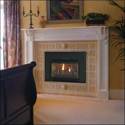 Majestic Black 30000 BTU Direct Vent Natural Gas Fireplace Insert  - 380IDVNV
