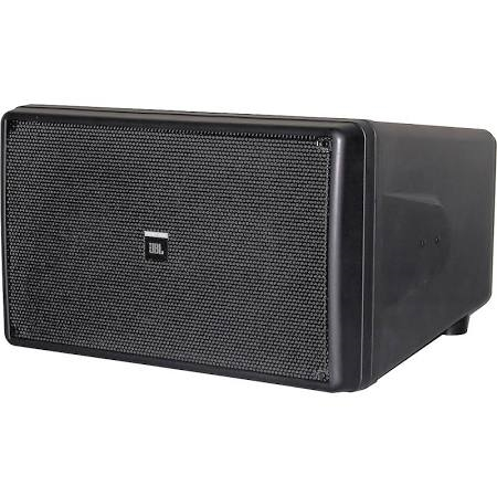 JBL Performance outdoor sub - CONTROL SB210   ( NFL PLAYOFF WEEKEND SPECIAL)