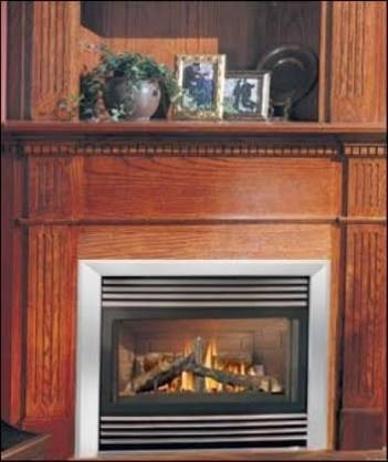 Napoleon 35 Zero Clearance Direct Vent Fireplace Natural Gas Gd34nt