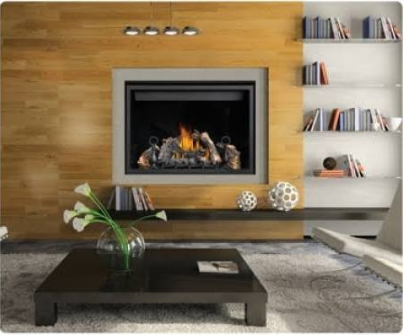 Napoleon Clean Face High Definition Direct Vent Gas Fireplace - HD46NTSB