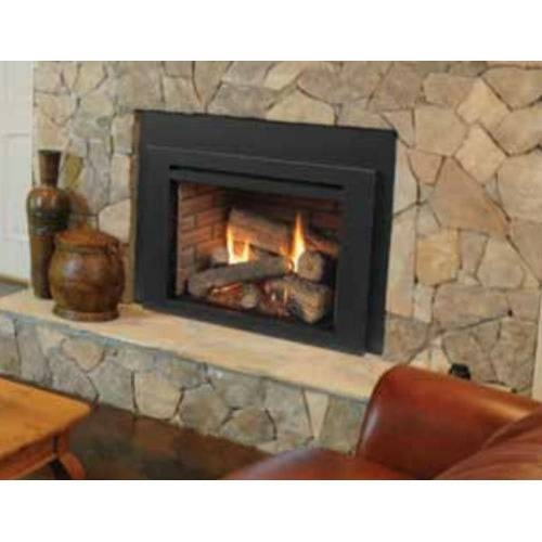 Majestic Triumph Contemporary Natural Gas Direct Vent Medium Insert  ICFDV30CNTSCSB