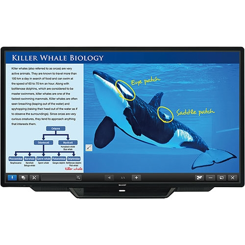 "Sharp 80"" Class AQUOS BOARD Interactive Display System - PN-L803C"